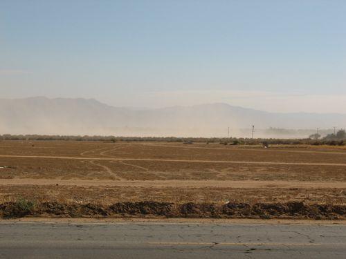 Windy day in High Desert