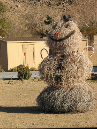 Desert snowman